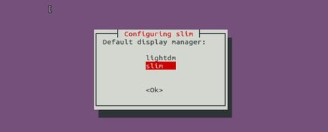 set default displayer manager ubuntu