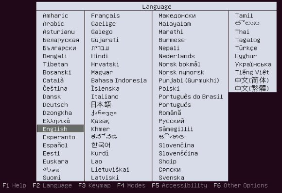 Ubuntu 13.10 Server select language