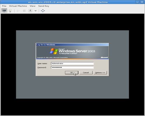 virtual manager guest console