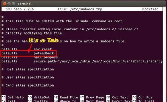 Enable password feedback in terminal