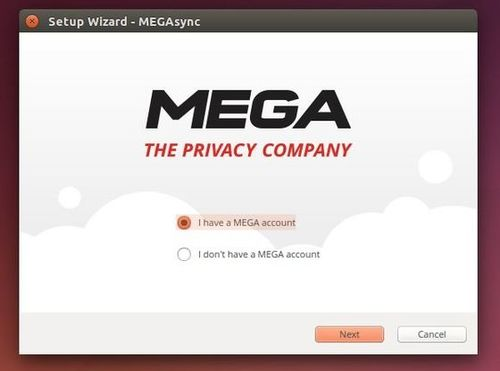 mega sync client